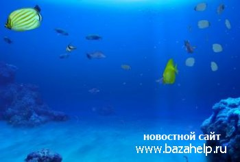 Заставка DigiFish Aqua Real 2.104 a